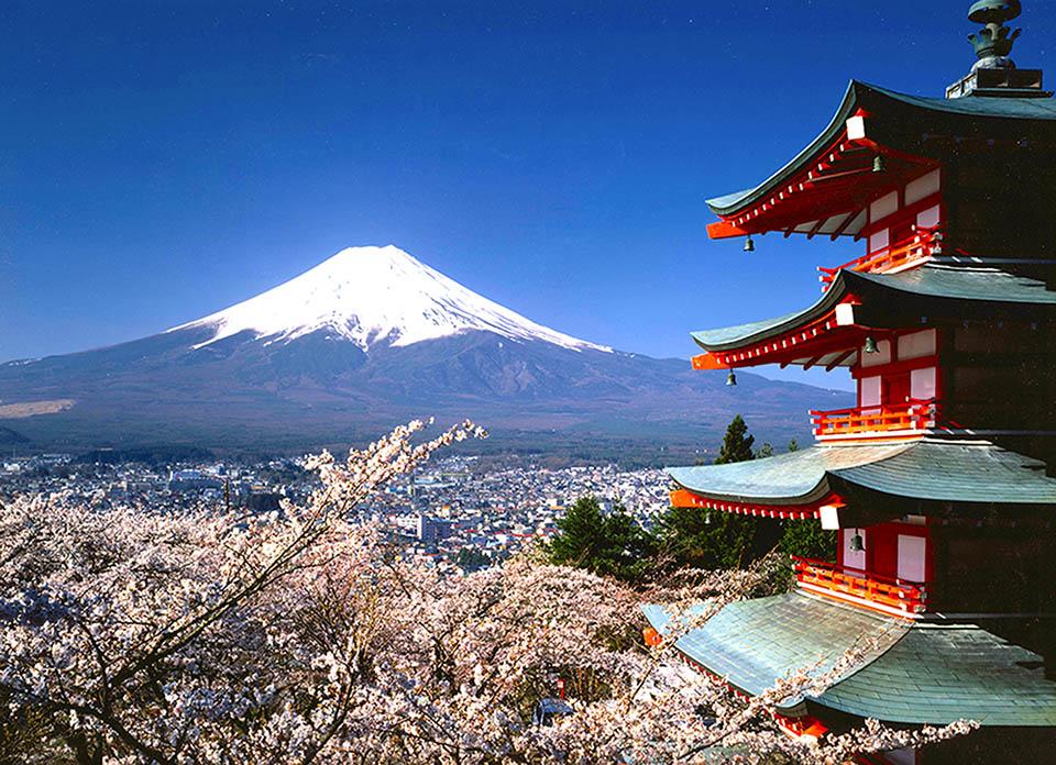Mt. Fuji 960